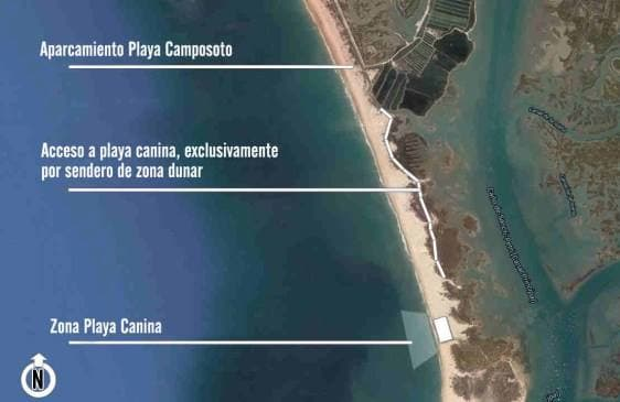 playa-perros-san-fernando-Camposoto