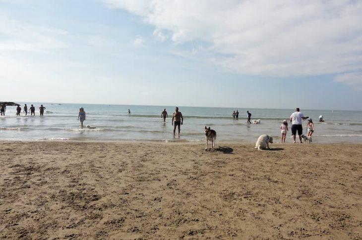 Les salines playa de perros en Cubelles